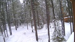view from Cabin on 2018-01-14