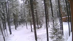 view from Cabin on 2018-01-17