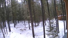 view from Cabin on 2018-01-19