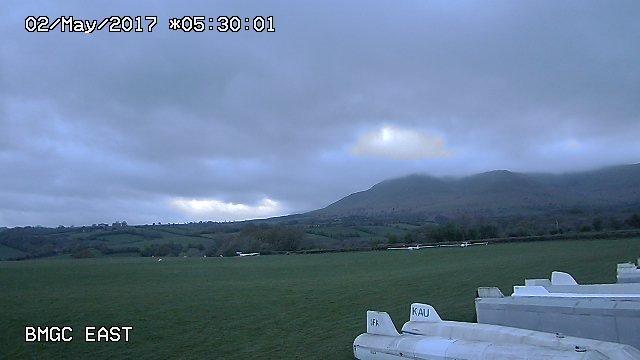 time-lapse frame, pre-dawn sheep raid webcam