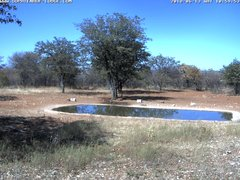 view from Sophienhof Lodge Waterhole on 2018-06-13