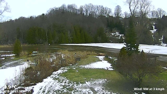 time-lapse frame, Ice Jam webcam