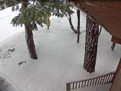 view from Tahoe Woods on 2019-01-07