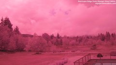 view from Olympic View Cabins Hurricane Ridge Cam on 2018-09-15