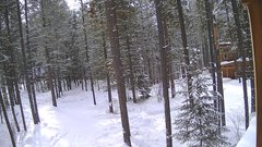 view from Cabin on 2019-02-11