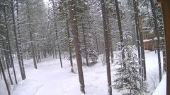 view from Cabin on 2019-02-14