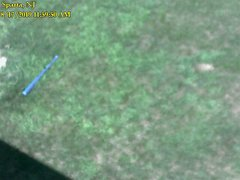 view from Sparta WX on 2019-08-17