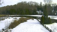view from YardCam on 2019-01-05