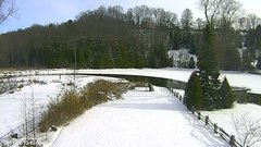 view from YardCam on 2019-01-12