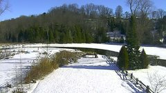 view from YardCam on 2019-01-13