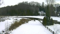 view from YardCam on 2019-01-14