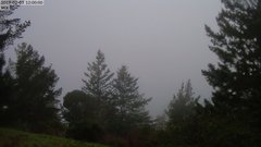 view from Kings Mountain on 2019-02-03