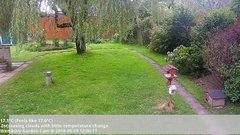 view from Wembury, Devon. Garden Cam on 2018-09-19