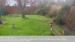 view from Wembury, Devon. Garden Cam on 2019-02-09