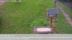 view from Wembury, Devon. Garden Cam on 2019-11-13