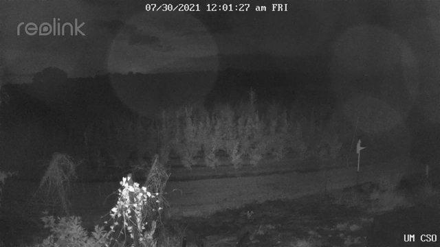 time-lapse frame, UM CSO webcam